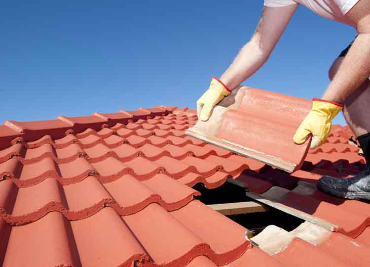 New Roofing & Repairs